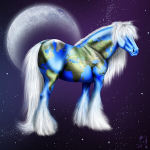 I Love the Internet (…and how the www taught me about horses.)